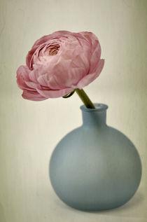 Edle Schönheit by Susann Mielke