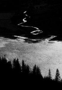 The Stream von Nigel Forster