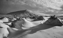 Snow Scoops  von Nigel Forster