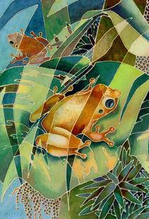Coqui Shadows I von Monica Linville