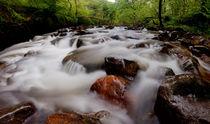Pontneddfechan Falls von Nigel Forster