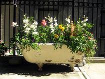 Baignoire-fleurie