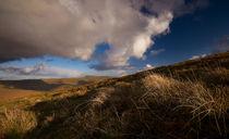 Mynyd Troed Landscape von Nigel Forster