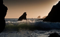 The Wave by Nigel Forster