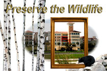 Preservation of Wildlife by Lis Todd