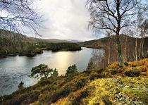 Beautiful Glen Affric by Jacqi Elmslie