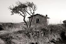 Verlassener Landstrich - Zona Abbandonata von captainsilva