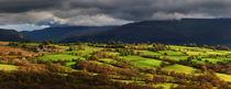 Dsc-10058-mynydd-llangynidr-panorama-crop