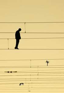 Balancing on wires by Sofia Wrangsjö