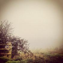 Fog Fields. von Benjamin Castle