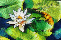 Water Lily, Van Gogh Style by Graham Prentice
