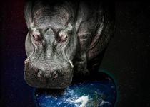 Hippo on earth von gnubier