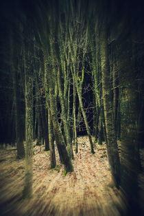 Magic Forst by Elke Balzen