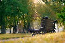 Park by Tanja Krstevska