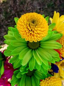 Fleur Verte by Angela Pari Dominic Chumroo