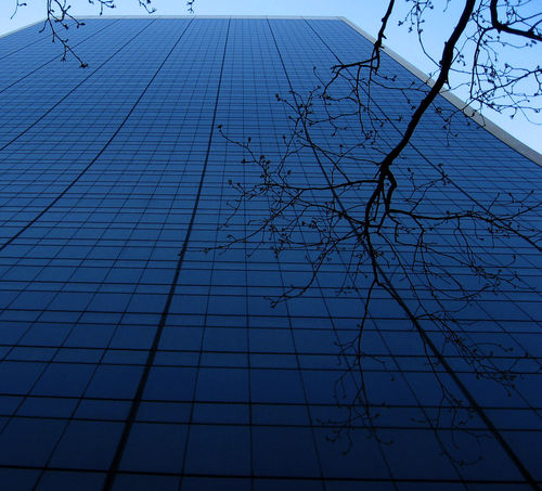 Newyork08cannon-073-edit
