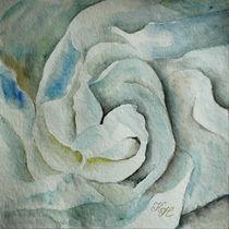 Camellia flower by Katia Boitsova-Hošek