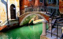 Venice von Barbara Walsh