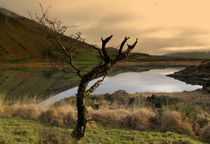 Annascaul Lake by Barbara Walsh