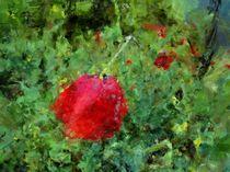 sketchy flower von Georgi Koncaliev