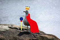 Kingseagull