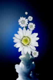 Kleine Vase. von Bernd Vagt