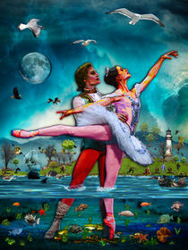Blue Moon Ballet A Complete Fiction von Blake Robson