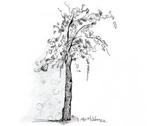 Penutstree