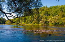 Natural Paradise - Canada von Alberto Vaccari
