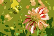 Flora Art von Karoline Stuermer