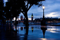 Westminster Puddle by Dawn OConnor