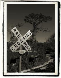 Railroad Crossing by Brian Grady