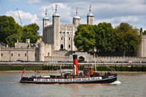 Tug and the Tower of London by Dawn OConnor