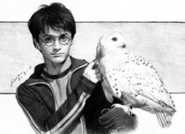 Harry Potter and Hedwig von frank-go