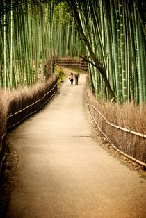 Whither in the Bamboo? by Benjamin So