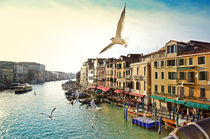 Grand canal, view from Rialto bridge, Venice by tkdesign