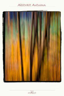 Abstract Autumn von arteralfo