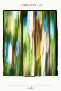 Abstract Palms by arteralfo