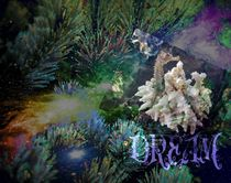 ocean dream von zahara-dzignz-2011