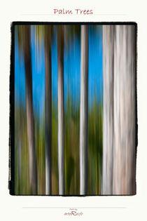 Palm Trees von arteralfo