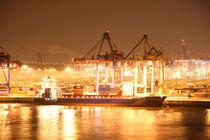 Containerterminal Tollerort Hamburg von alsterimages