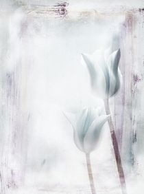 'Two Tulips' by Claudia Gründler