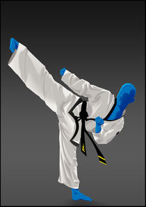 Taekwondo von bear