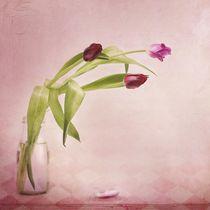 rosa & rot von Priska  Wettstein