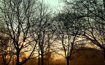 Winter sunrise over Warsaw 2 by Agnieszka  Grodzka