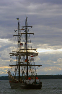 Tall Ship 2 von Sandra Woods