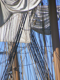 Rigging on Tall Ship 2 von Sandra Woods