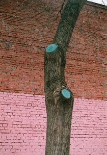 paints by yulia-dubovikova