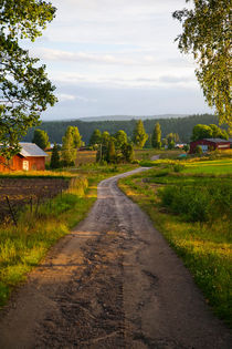 A country lane on a summers evening in Varmland, Sweden. by kbhsphoto