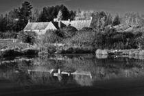 Springwatch Reflections by royspics